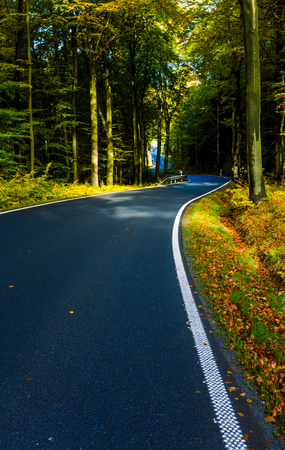 country road: Autumn scene with road in forest, Autumn landscape with road and beautiful colored trees