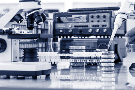 test equipment: workbench in microbiological laboratory