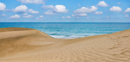 Sand desert dunes and sea