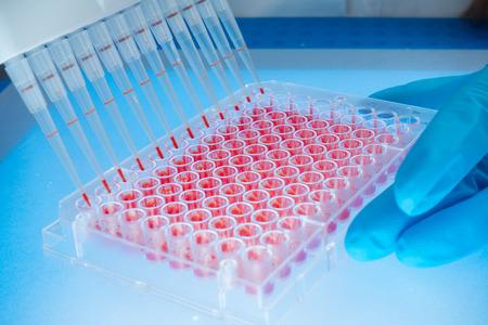 genetic: scientist woman in genetic laboratory