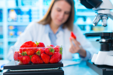 checking food Strawberries, on the content herbicides and pesticides