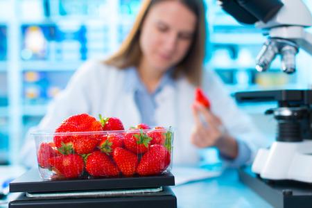 Comprobar Fresas de alimentos, sobre los herbicidas y pesticidas contenidos Foto de archivo - 49750877