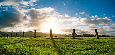 Nouvelle-Zélande, champ vert, lever du soleil ou coucher de soleil