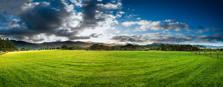 New Zealand green field sunrise