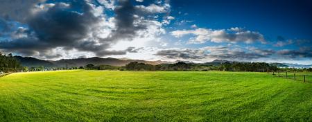 New Zealand green field sunrise