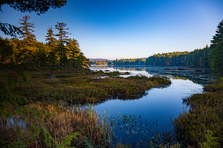 hampshire: Lake in the Forest New Hampshire USA