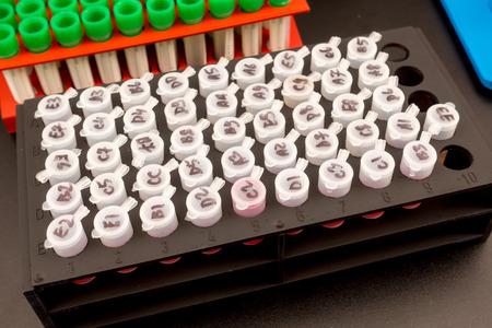 medische plastic reageerbuizen Stockfoto