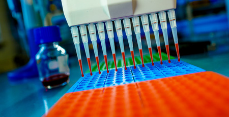 cancer research: DNA samples are loaded to 96-well plate for PCR analysis