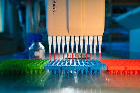 pipette: pipeta de múltiples en laboratorio de microbiología