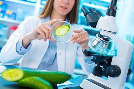 Kwaliteitscontrole van levensmiddelen. Jonge vrouw in chemisch laboratorium. test van komkommer Stockfoto