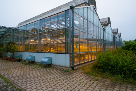 scientific farming: JENA, GERMANY - MAY, 29, 2016: Glasshouse plant on Beutenberg Campus in Jena, Germany. Editorial