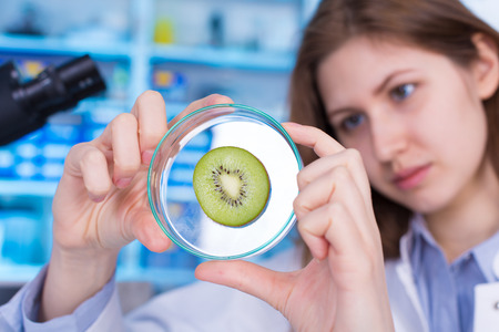 Quality control expert inspecting at fruits in the laboratory, pesticides and herbicides content test