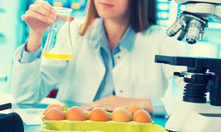 food testing: girl in the laboratory testing of food quality egg. Check the content of protein, fat, cholesterol and pathogens