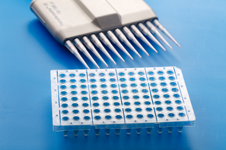 amplification: Multi pipette and 96 well plate