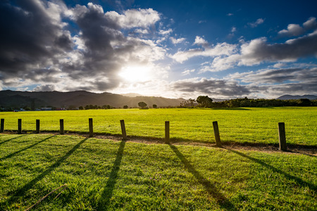 denver at sunrise: Green grass field, wooden Fence and mountain on horizon at summer morning. American spring sunrise in Denver Colorado USA