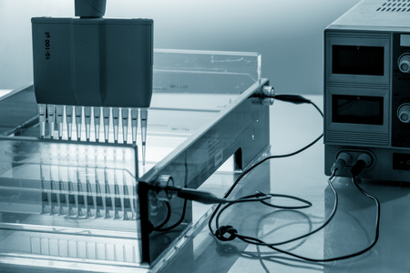polymerase: load DNA sample in electrophoresis device Stock Photo