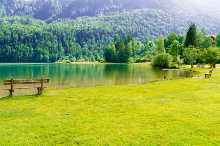 green park: bench in green park and lake in alps