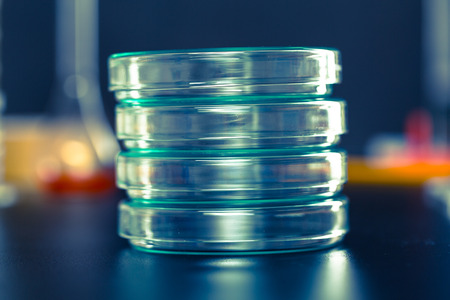 information equipment: Petri dishes Stock Photo
