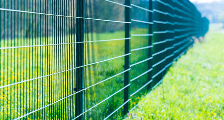 wire fence: Metal fence in green field Stock Photo