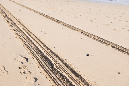 skidmarks: car track on sand in desert