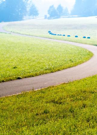 twisting: Twisting road on green meadow in the early morning Stock Photo