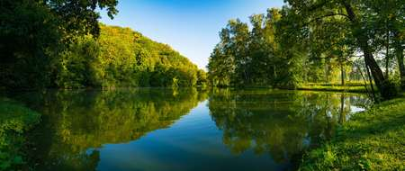 preserve: Lake and green forest