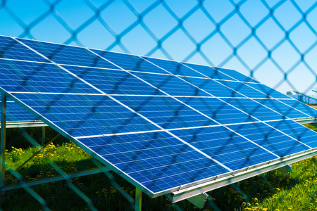 Battery of solar cells protected  metal mesh from by vandals