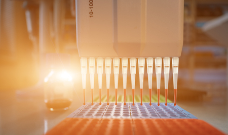 pcr process in microbiology laboratory 스톡 콘텐츠