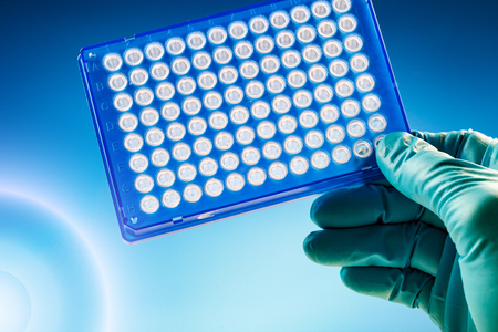 pcr: Scientist in laboratory holding a 96 well plate for PCR analysis and research in the microbiological lab Samples microplate Stock Photo