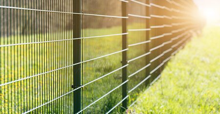 bush mesh: Metal fence leaving in perspective with the sun on grass background