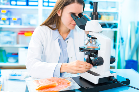 Fish research in laboratory.  Food Processing and Quality Control Fish Фото со стока