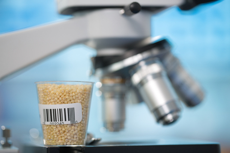 petri dish: Seeds and cereals in the laboratory of food quality