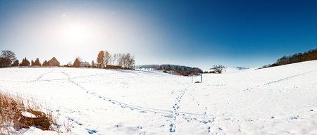 covered fields: snow field at sunny day