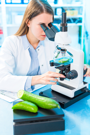 Checking fruit and vegetables for harmful elements. Laboratory for Inspection of Food Quality Stock Photo