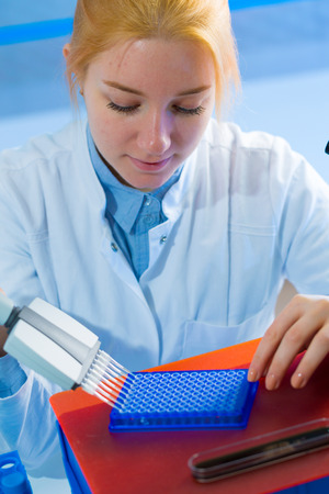 pcr: using a multi channel pipette for pcr  processing in microbiological laboratory