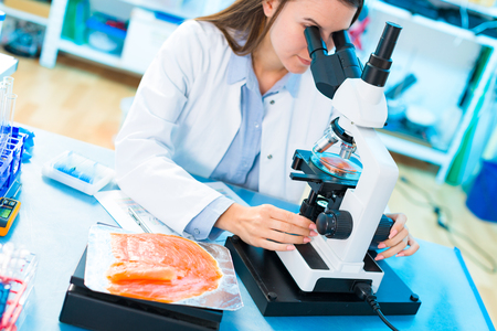 Fish research in laboratory.  Food Processing and Quality Control Fish Stock Photo