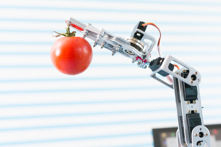 robot holds an tomato in his arm Stock Photo