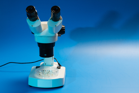 Research plant sprout under microscope Фото со стока