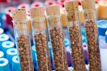 gene banks plants Banque d'images