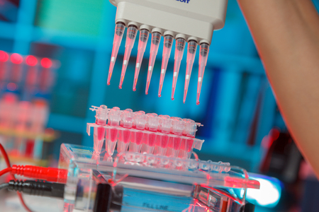electrophoresis device in a genetics lab to decrypt the genetic code Stock Photo