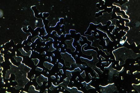nanostructure of the metamaterial in a microscope