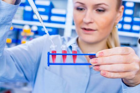 Female technician in laboratory of genetics - reprogenetics. Young technician use dispenser for pipetting PCR strips 写真素材 - 129982538