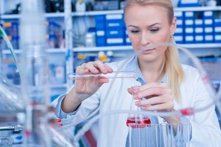 Female laboratory assistant with chemical experiment in scientific laboratory. Female medical or scientific researcher using test tube on laboratory. 写真素材 - 129982553
