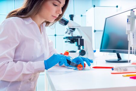 Young woman at food quality control in laboratory