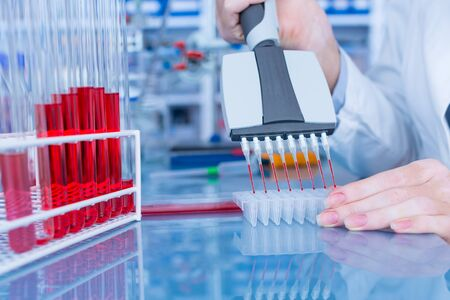 Multichannel pipette in the laboratory Stock Photo