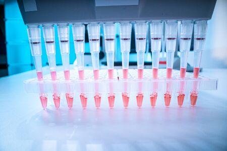 sample of biological sample for DNA analysis