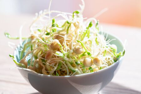 Germinated seeds for salad. Seeds For Salad Sprouts Banque d'images