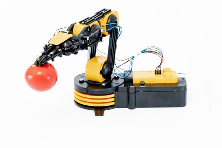 Robot hand   with tomato