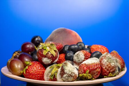 Fruits and berries in a cup rotted and moldy Stock Photo
