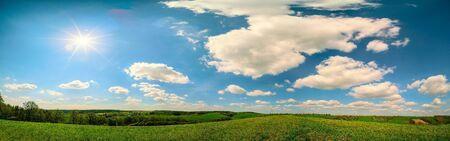 View of a wheat field in Kansas. grass on blue sky background. Green Kansas wheat